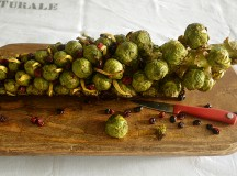 Soy Ginger Marinated Roasted Brussels Sprouts on the Stalk